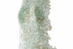 Ediiton III <br/>Torso clear glass, 19 x 12 x 2 inches<br/> 2020